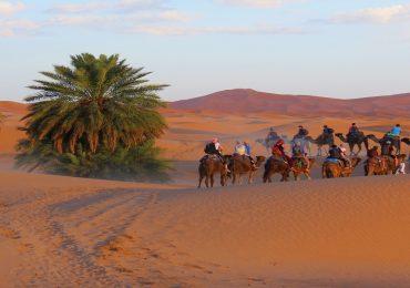 morocco sahara desert trek