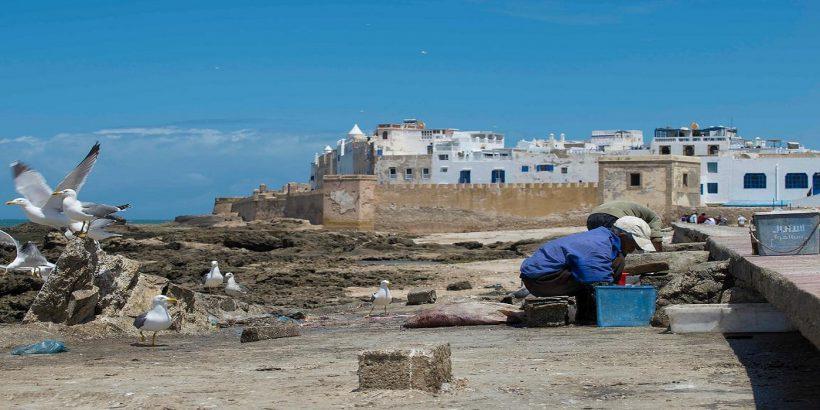 essaouira old medina port